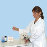 Veterinary Kits